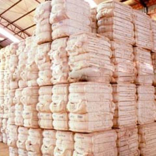 Cotton to rally on Indian export ban, Chinese demand