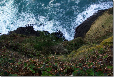 Cape Meares-44