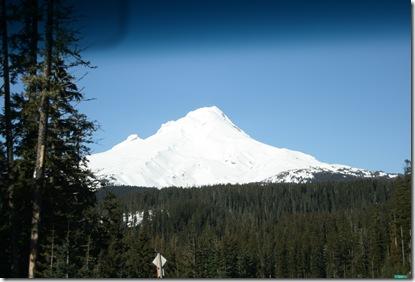 Mt Hood-8