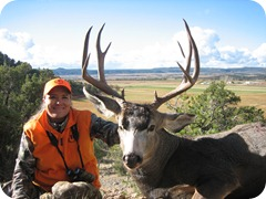 colorado mule deer 2010 audrey 053