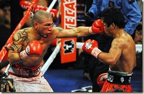 fight17