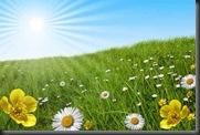 Spring - fotolia_3211573