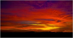 Morning Glory-IMG_7669-Edit-Edit