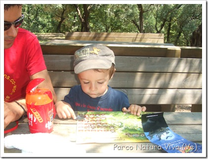 Parco natura viva Safari 005