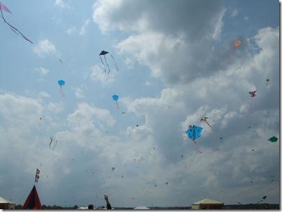 Coloriamo i cieli 2008