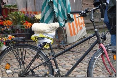 seggiolino peloso su una bici in munsterplatz