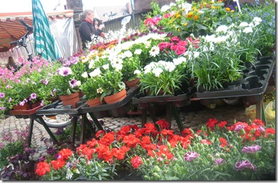 fiori al mercato in Munsterplatz