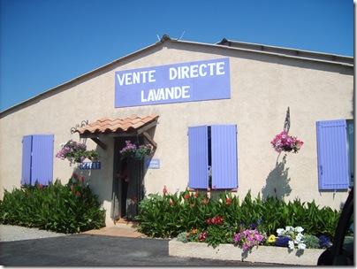 vendita diretta di lavanda nei pressi di Valensole
