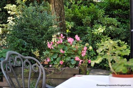giardinoDSC_0458