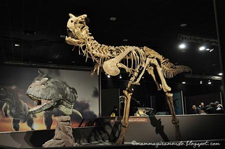 Dinosauri della PatagoniaDSC_1181