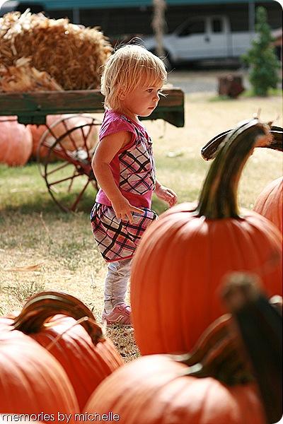 Daisy Month 19_pumpkinpatching 004