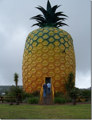 12-04-2009 006 Bathurst - The Big Pineapple