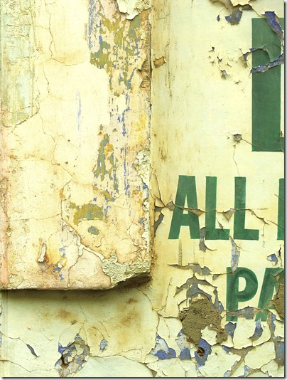Walls_of_India_cover