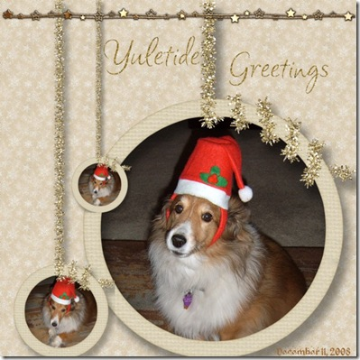 December-2008-#3-005-Maggie-in-Santa-Hat