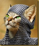 medieval-kitty-photomanipulation