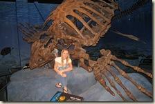 Dinosaur Museum 10