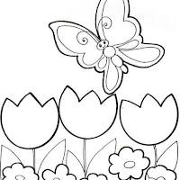 Riscos - Insectos (16).jpg