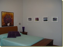 aster suite (22)