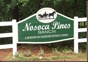 NOSOCA Pines 054