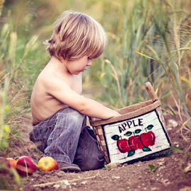 Collecting Apples by Chinchilla  Photography - Babies & Children Toddlers ( field, countryside, blonde, sweet, little boy, outdoors, summer, apples, cute, toddler )