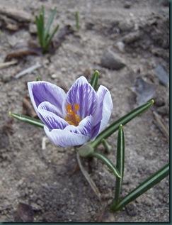 February 2010 400