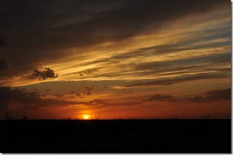 Arizona 2011 051