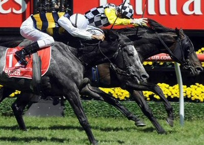 melbourne_cup_2008_wideweb__470x336,0