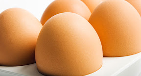 the-2010-egg-recall-list