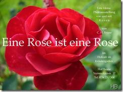Plakat Eine Rose ist eine Rose © H. Brune