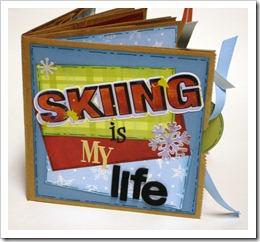 ski 001