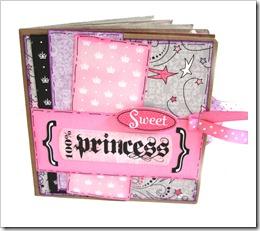 100 princess (1)