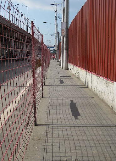 high wire mesh barrier separating sidewalk from road