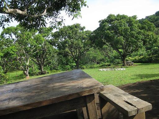 picnic area in Caleruega in Batangas