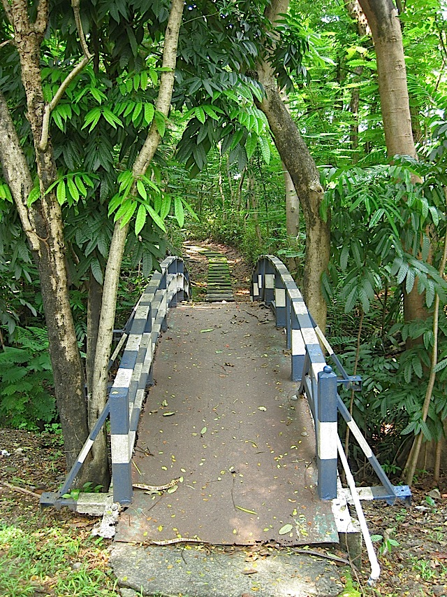 small blue and white bridge in the Loyola Heights campus of Ateneo de Manila