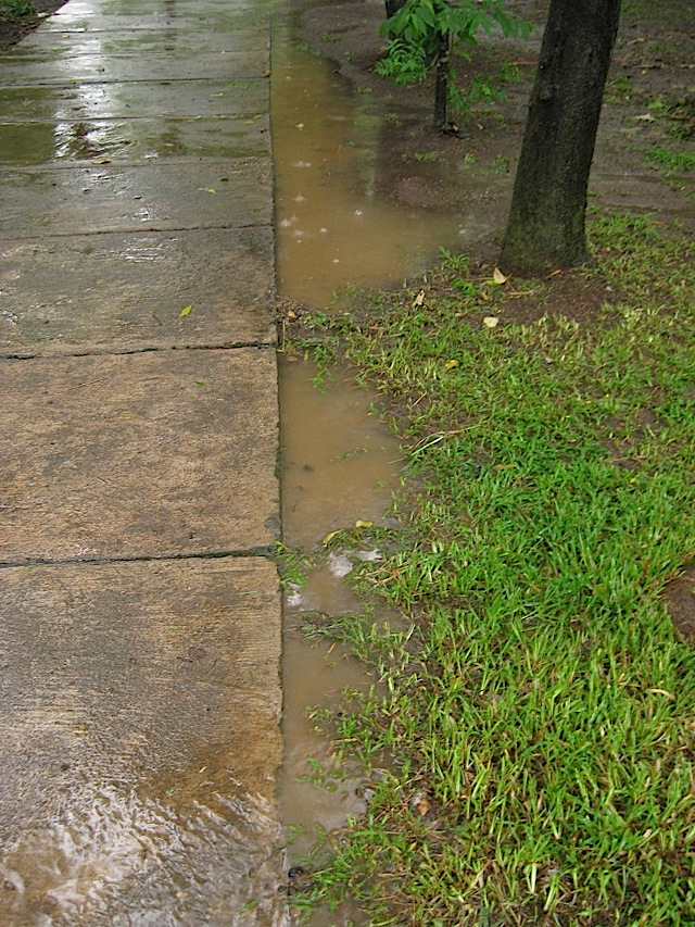 the start of the rains from typhoon Basyang (Conson) causing puddles on a path