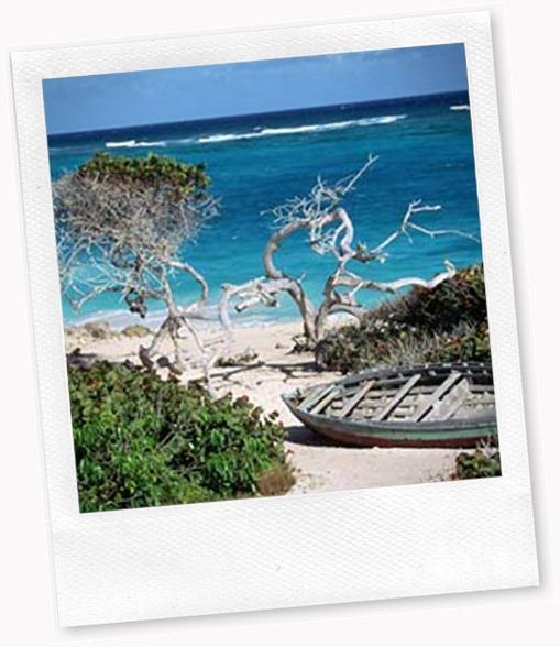 Bathsheba-Beach-Barbados-001