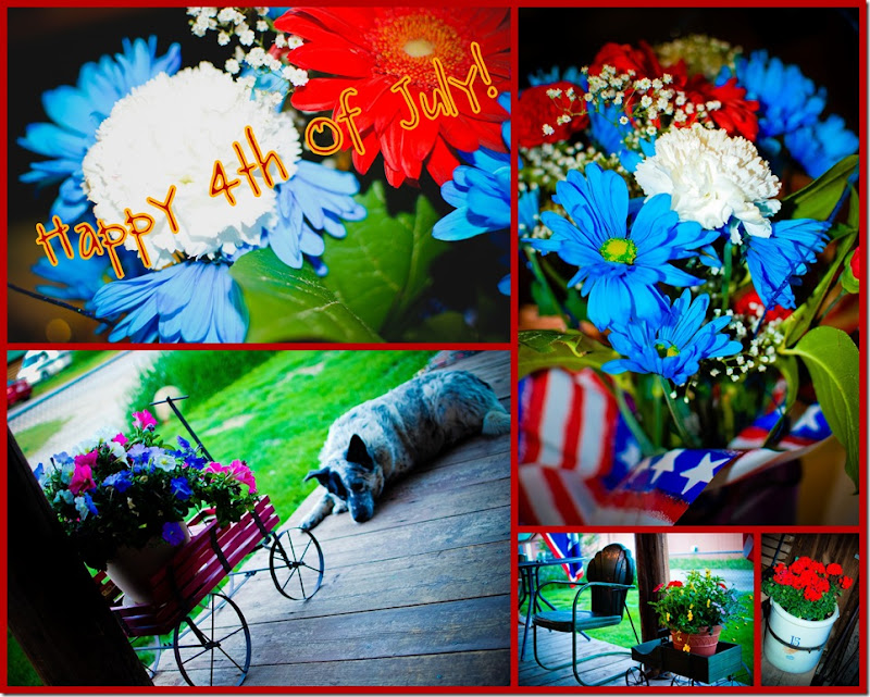 collage4thjuly2