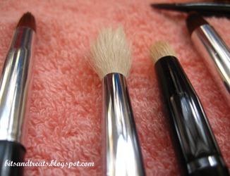 dried asstd brushes 3, by bitsandtreats