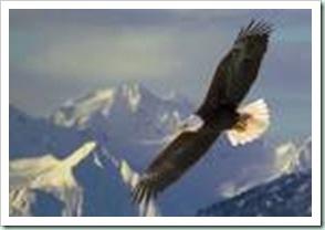 eaglemountain