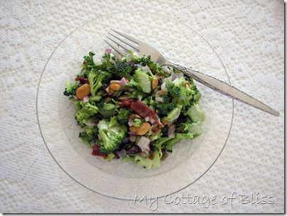 IMG_1895 broccoli salad #3