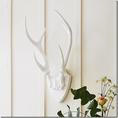 antler decor