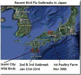 Bird Flu Japan