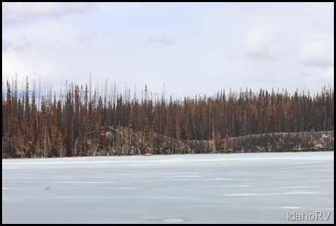 Forest-Fire-on-the-Cassiar