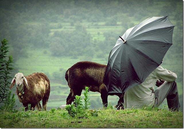 Lavasa Rain by Gauvar Patil