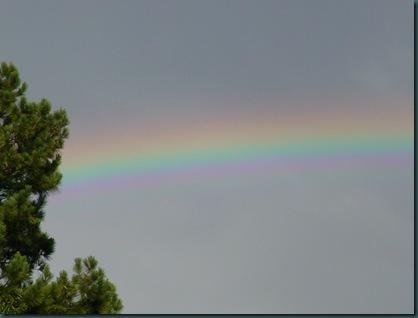 Rainbow and twins 005