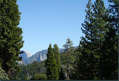 To California via Yosemite 166