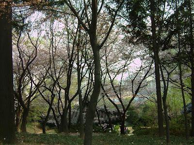 노량진 사육신공원 정경 [노량진,공원,사육신공원,noryangjin,sayuksin park]