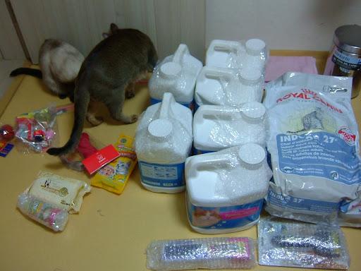 주문한 고양이 용품, 고양이쇼핑몰 이용후기 [고양이,고양이키우기,고양이집사,반려묘,cat,고양이용품,고양이사료,고양이간식,고양이모래,고양이장난감]