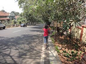 The walk down Altinho Hill