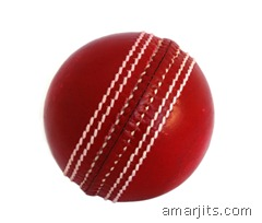 cricket_ball_o74i1